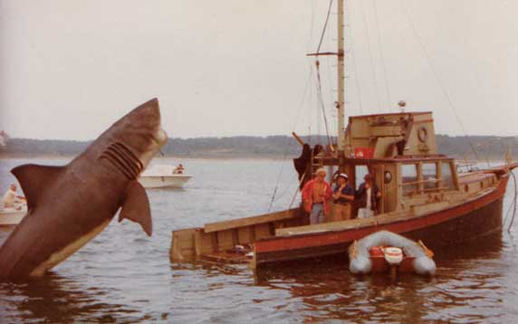 Jaws - Memories from Martha Vineyard