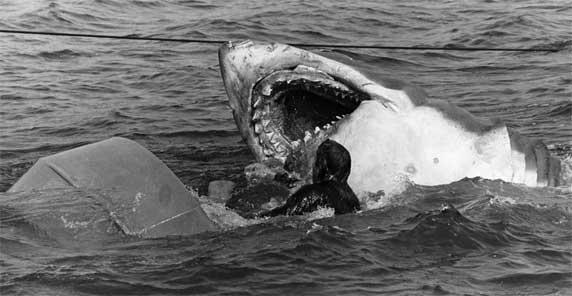 Jaws - Memories from Mathas Vineyard