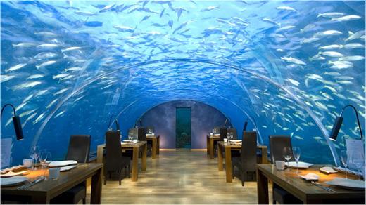 Conrad Maldives restaurant ithaa