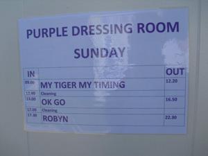 My Tiger My Timing Glastonbury