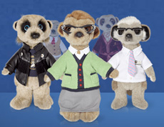 Comare The Market - Meerkats