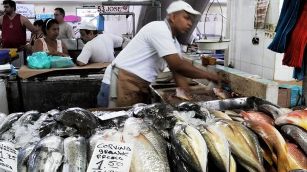 Panama City Market