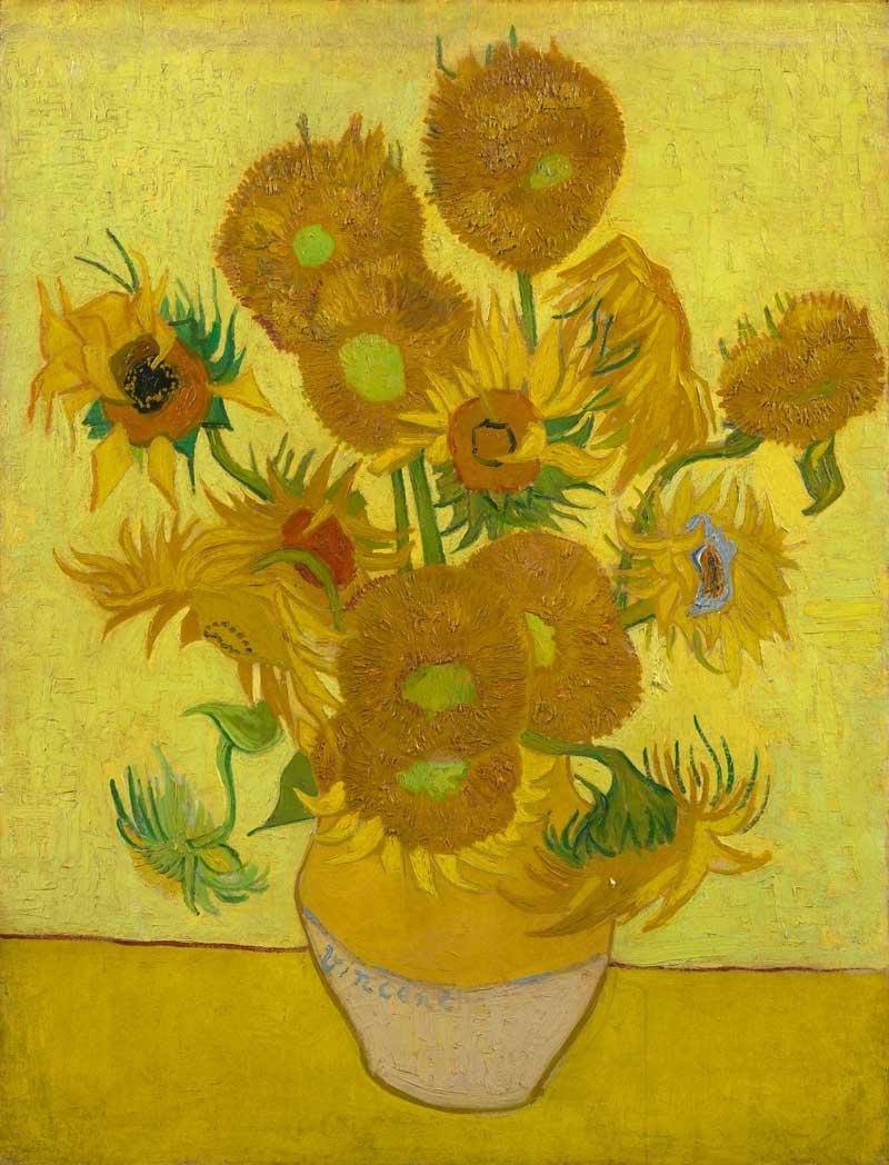 36.-Sunflowers