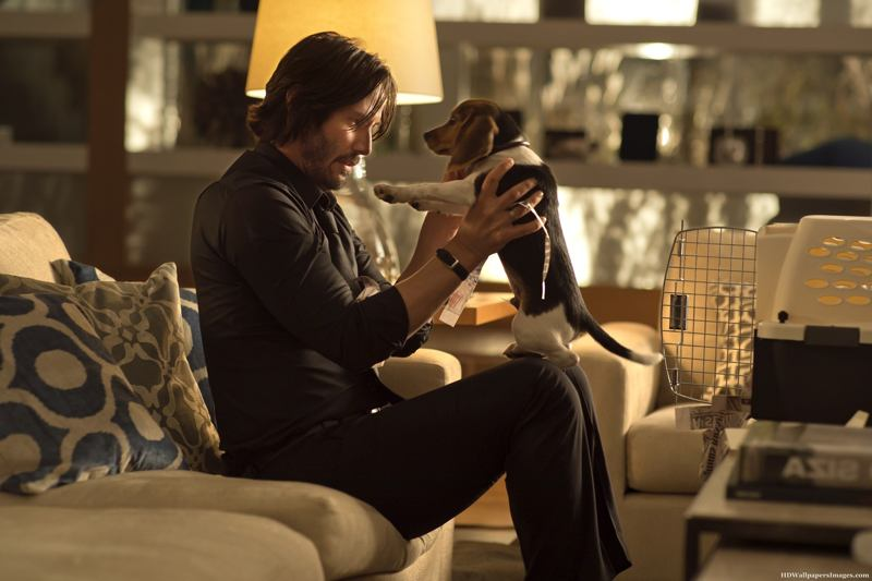 John Wick Film Review