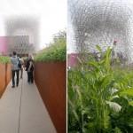 UK Pavillion Expo 2015 Milano
