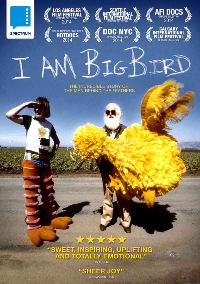 I am big bird competition
