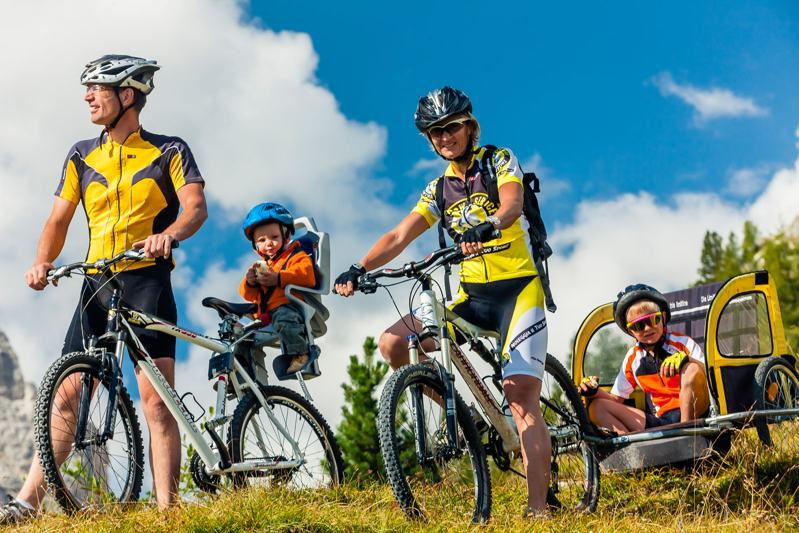 33 family mountain bike