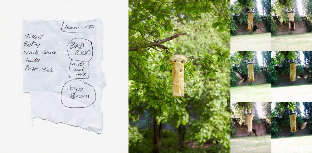 BAKED BIRD FEEDER - Art meets Culinary Compendium