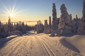 Winter Getaway: Weekend Wonders in Lapland