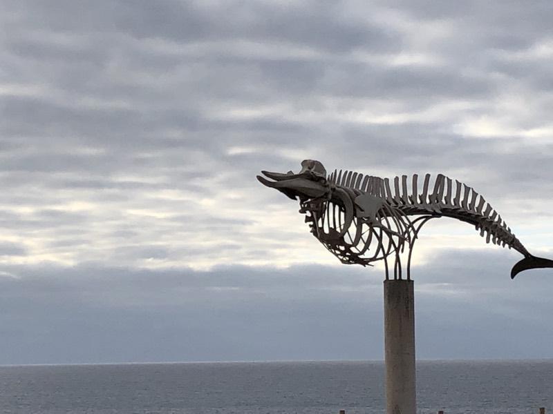 Fuerteventura jan2019